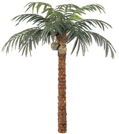 Date palm disease treatment